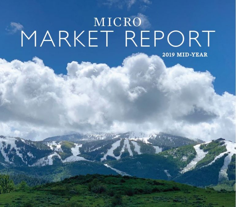 2019 MID-YEAR MICRO MARKET REPORTS ARE HERE!