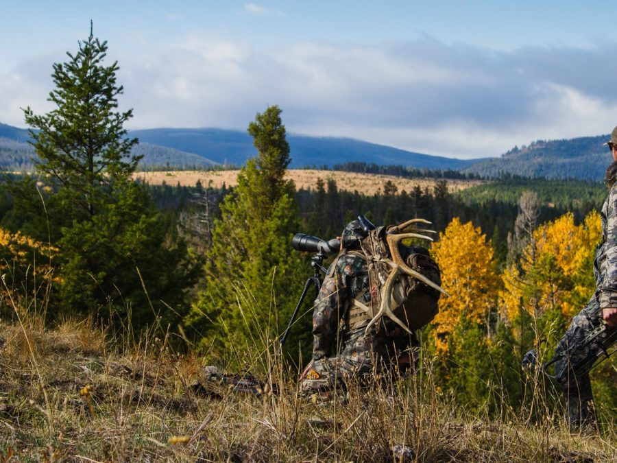 GHOSTS OF THE FOREST: ELK HUNTING IS HARDER THAN YOU THINK