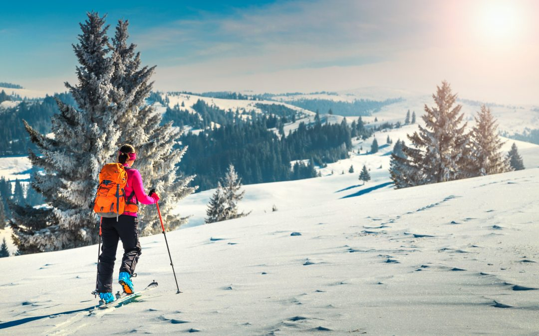 WHAT GOES UP MUST COME DOWN: A GUIDE TO ALPINE TOURING