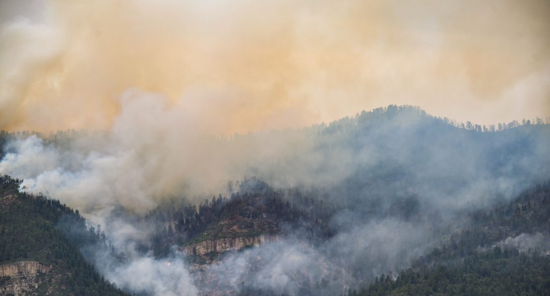 FIRE PROOF: 4 WAYS TO PROTECT YOUR HOME FROM WILDFIRES