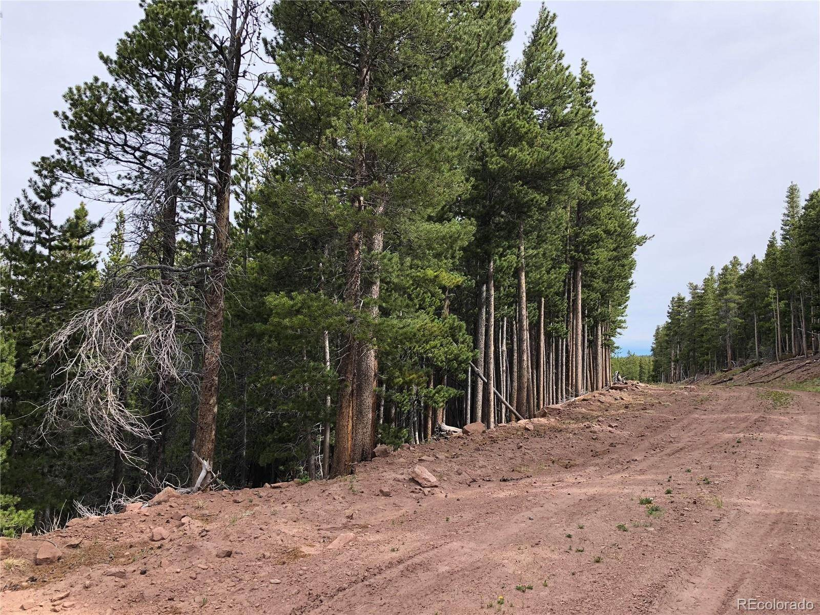 Terrain à 3332 Vaughn Lane Fort Garland, Colorado 81133 États-Unis