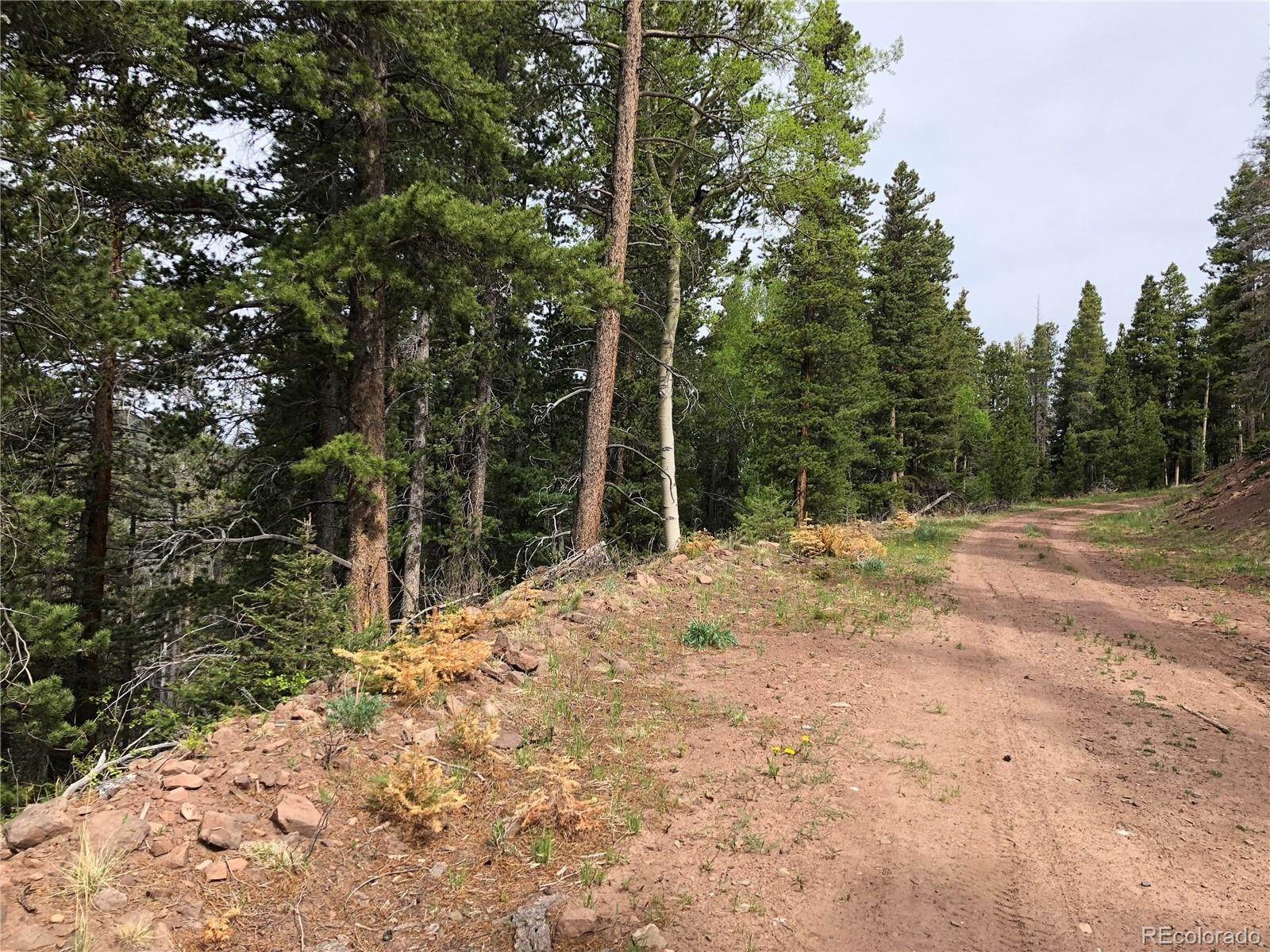 Terrain à 3328 Vaughn Lane Fort Garland, Colorado 81133 États-Unis
