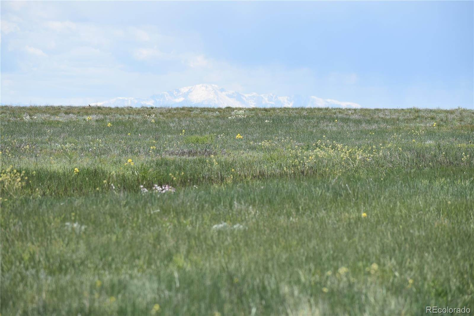 Land for Sale at County 169 Road Matheson, Colorado 80830 United States