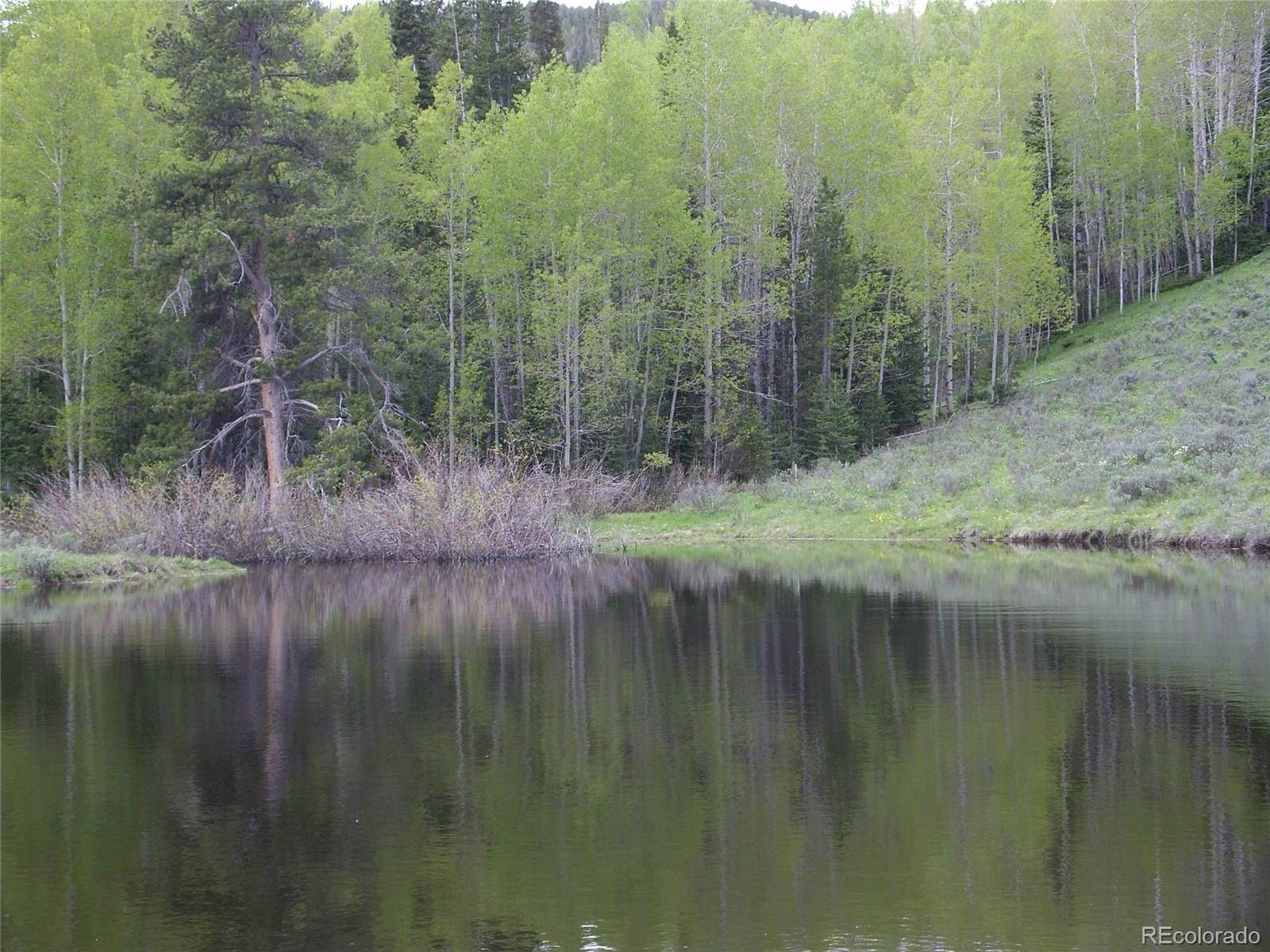 Land for Sale at 4963 State Highway 127 Walden, Colorado 80480 United States