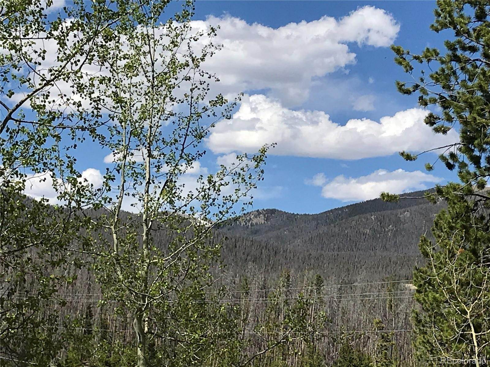 Land for Sale at County Road 471 Grand Lake, Colorado 80447 United States