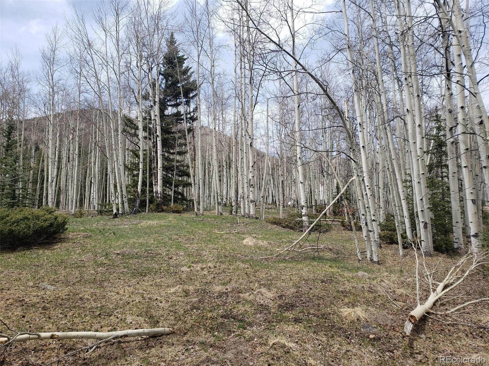Land for Sale at vacant land Jasper, Colorado 81132 United States