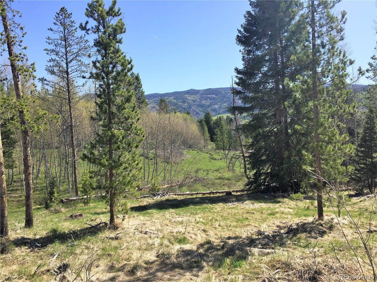 Land for Sale at 20955 Filly Trail Oak Creek, Colorado 80467 United States