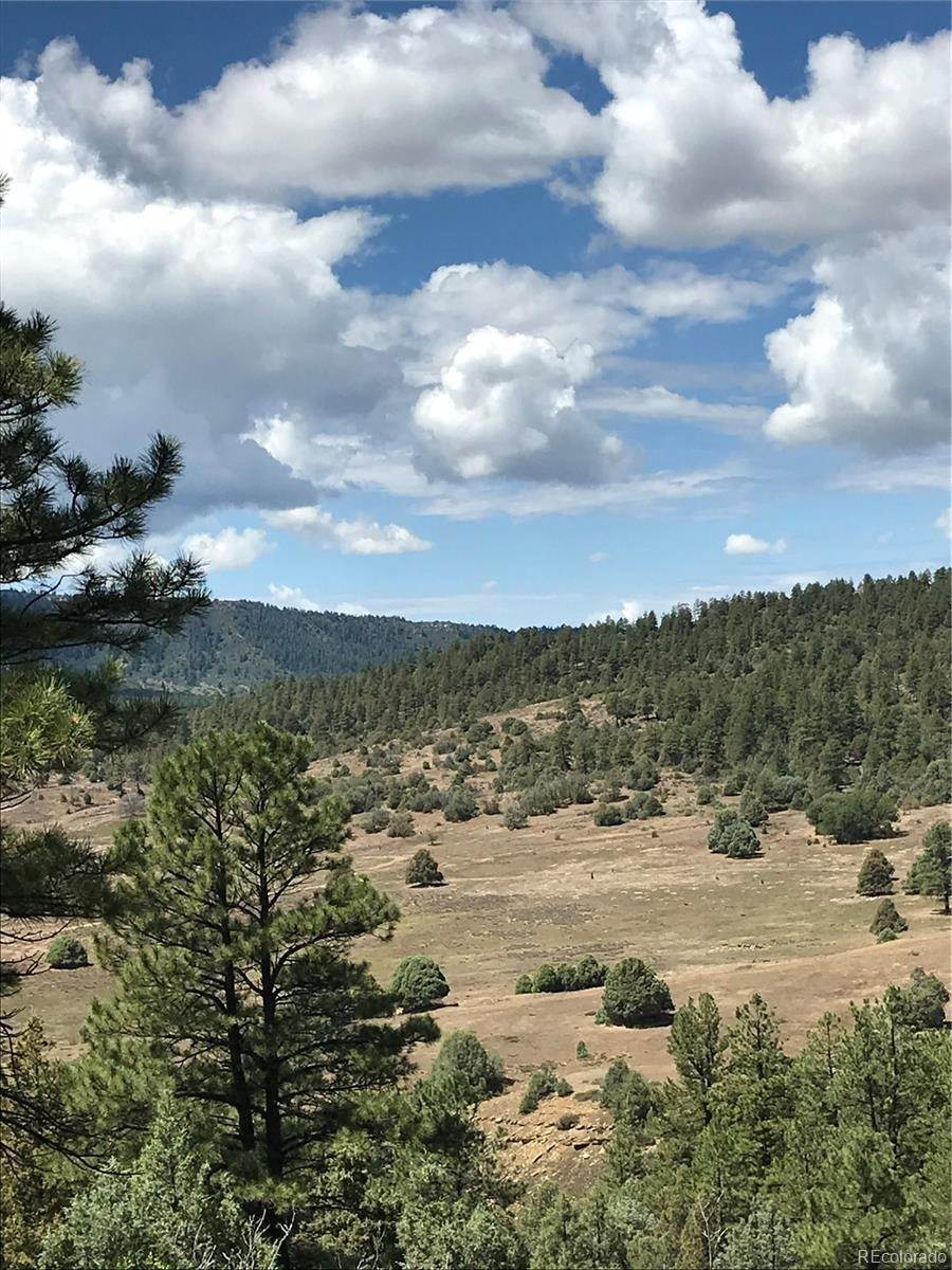 Land for Sale at 371 Cat Creek Overlook Pagosa Springs, Colorado 81147 United States