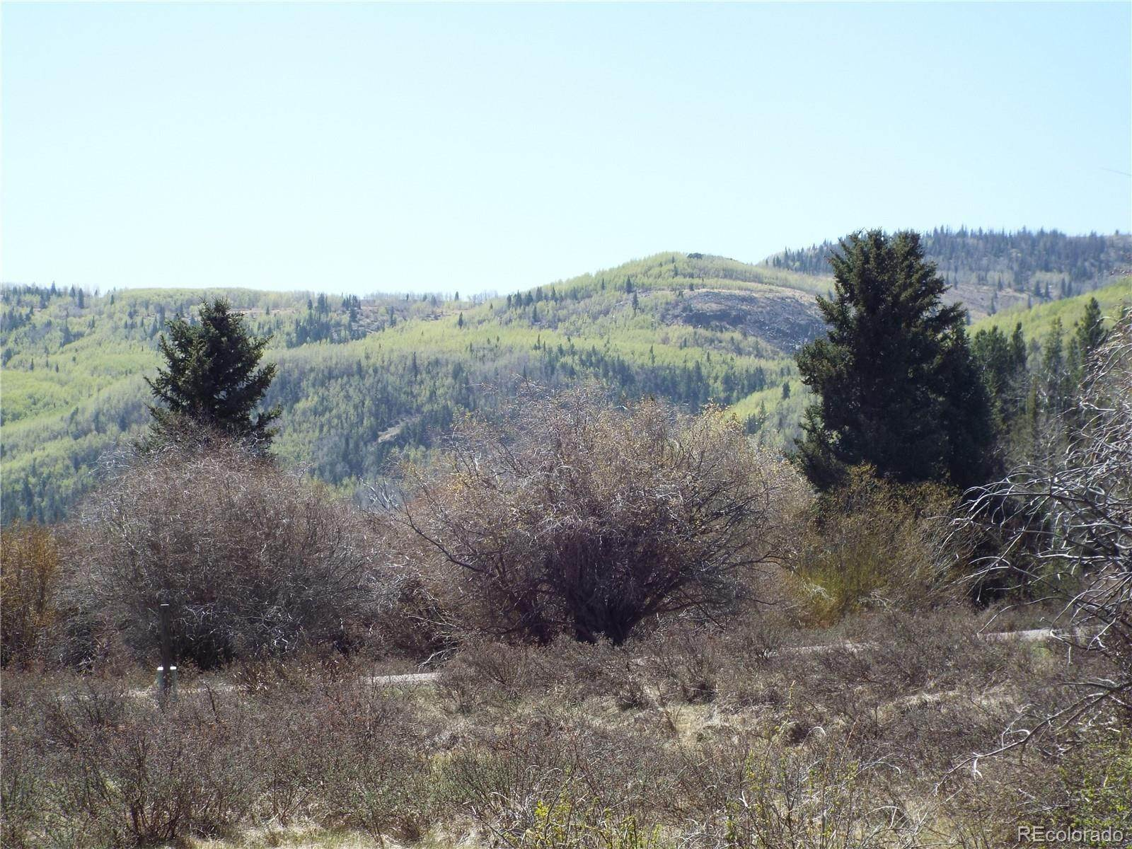 Land for Sale at Sheep Creek Trail Antonito, Colorado 81120 United States