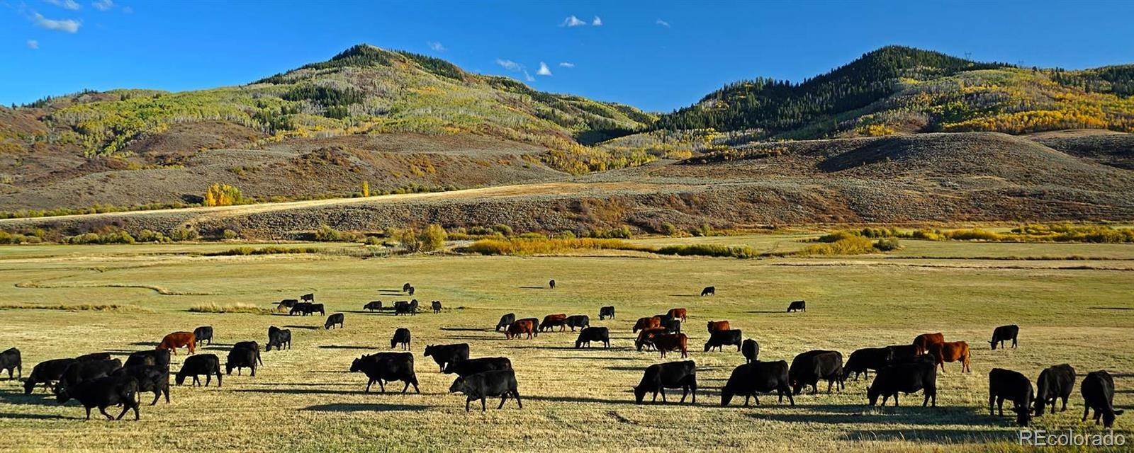 Farm for Sale at 23660 County Road 14 Oak Creek, Colorado 80467 United States