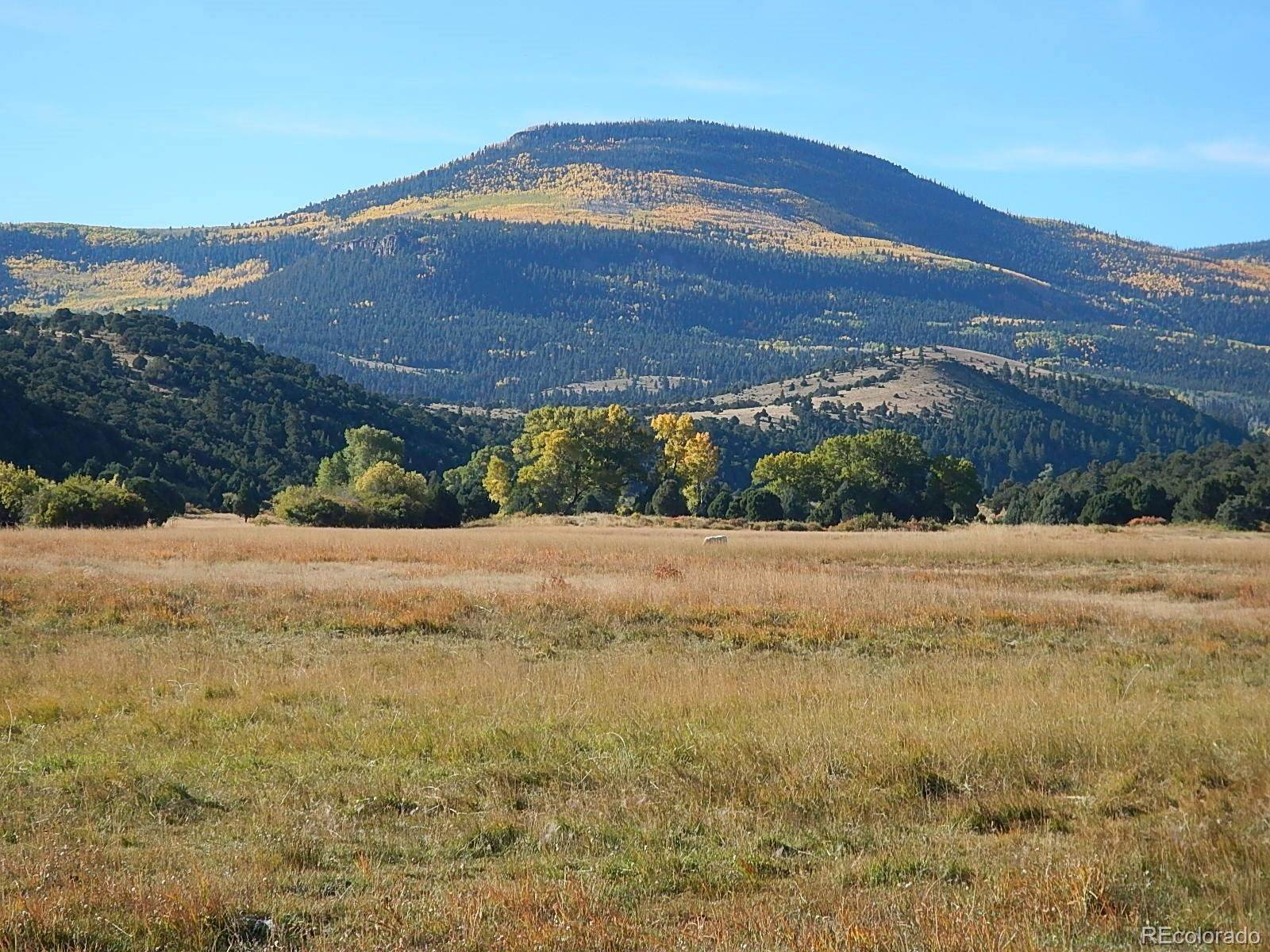 Land for Sale at 00 Highway 160 00 Highway 160 South Fork, Colorado 81154 United States