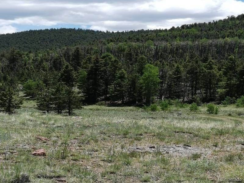 Land for Sale at Coolbroth Canyon Del Norte, Colorado 81132 United States