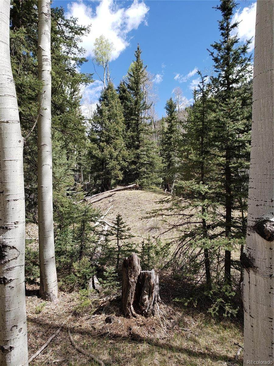 Land for Sale at Tract 22, Blk 19 Formerly Lots 14-20, Blk 8614-20 Jasper, Colorado 81132 United States