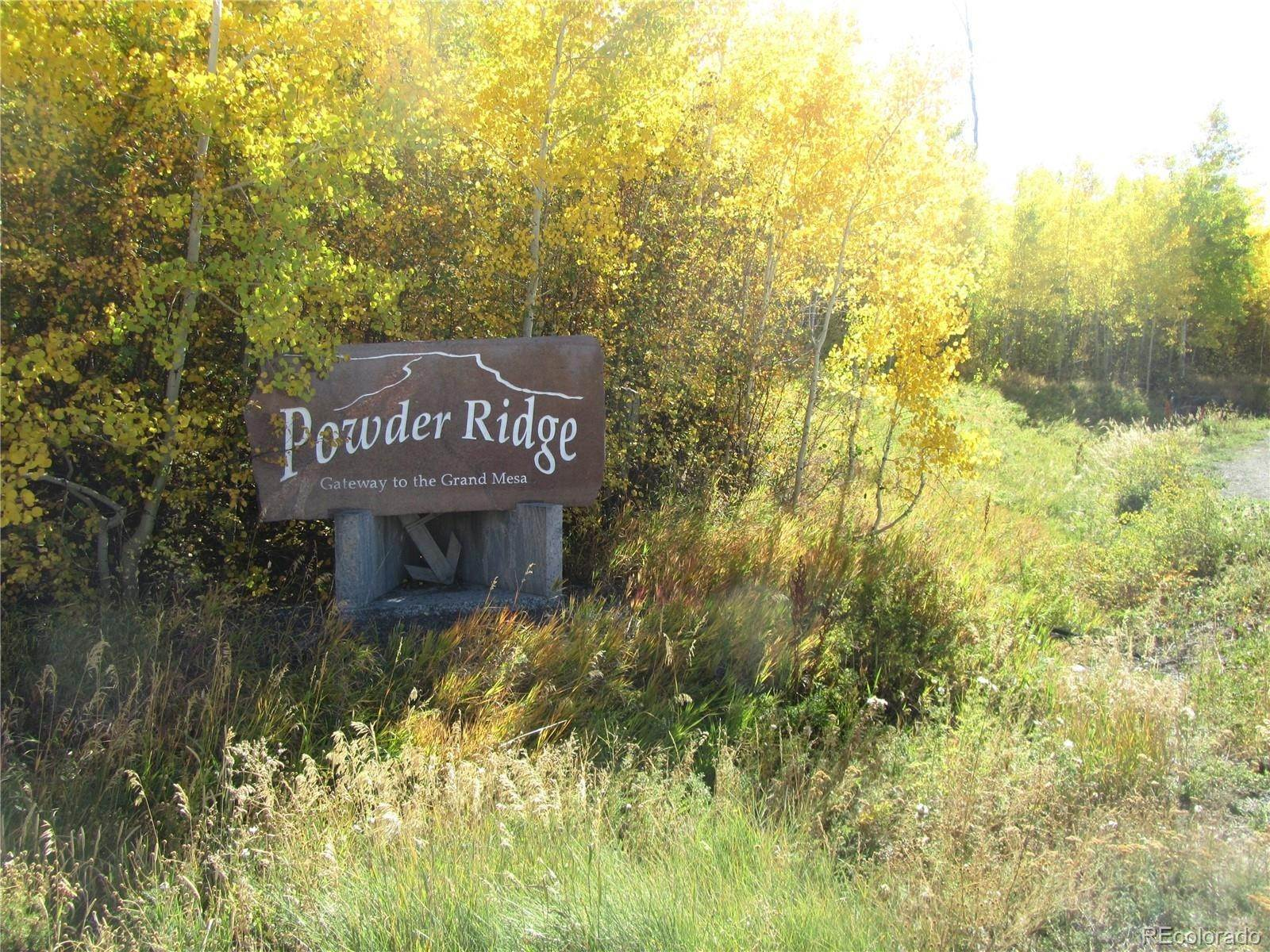 Land for Sale at 412 Powder Ridge Circle Mesa, Colorado 81643 United States