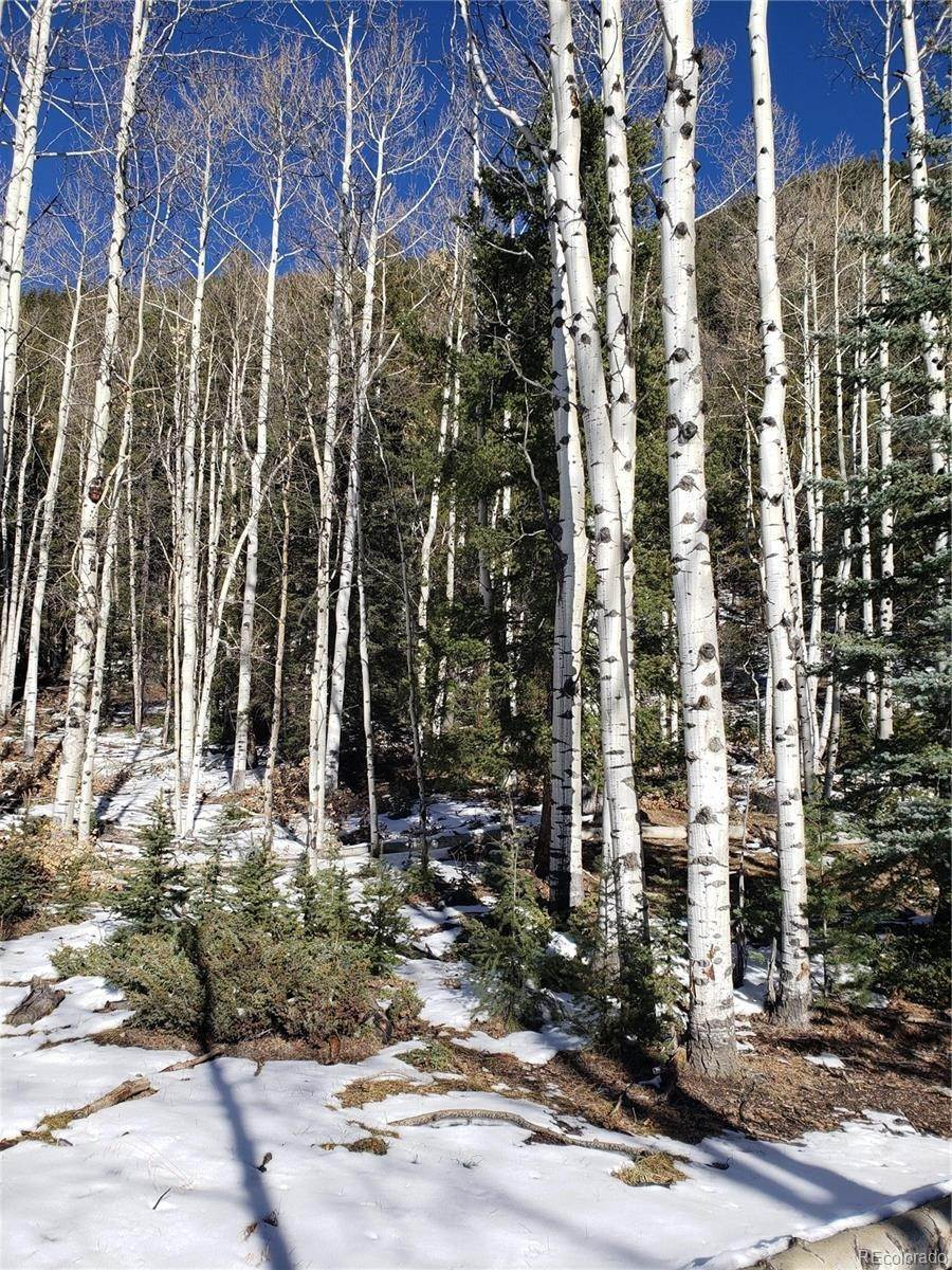 Land for Sale at Vacant Land Jasper, Colorado 81144 United States