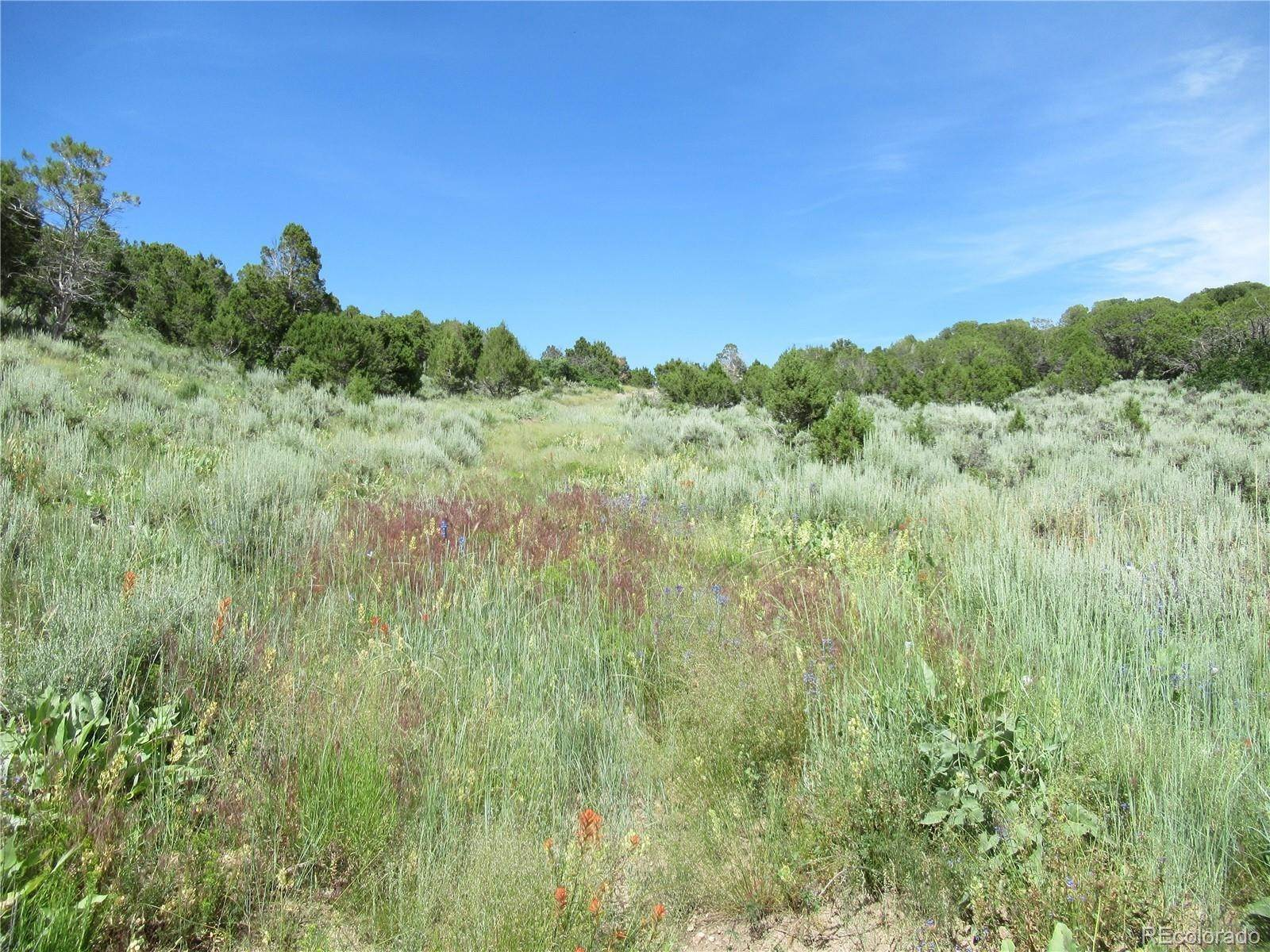 Land for Sale at County 140 Road Gypsum, Colorado 81637 United States