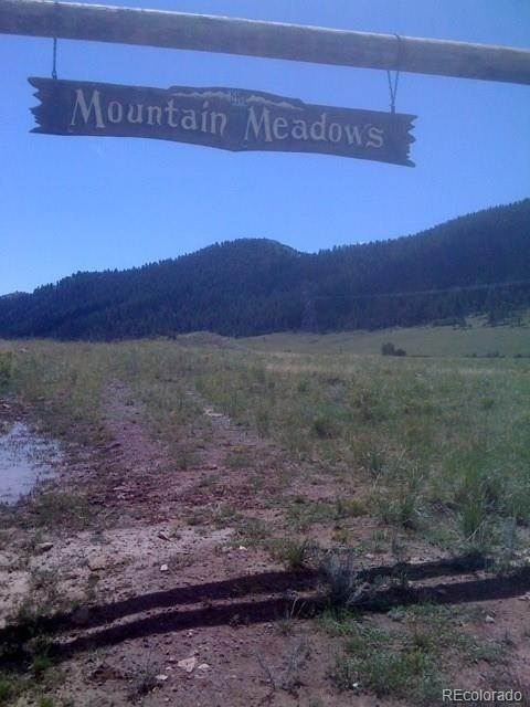 Land for Sale at 1473 Mountain Meadows Trail Canon City, Colorado 81212 United States