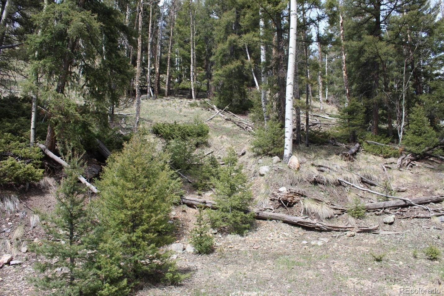 Land for Sale at Lots 10-12 Block 86 Jasper, Colorado 81132 United States