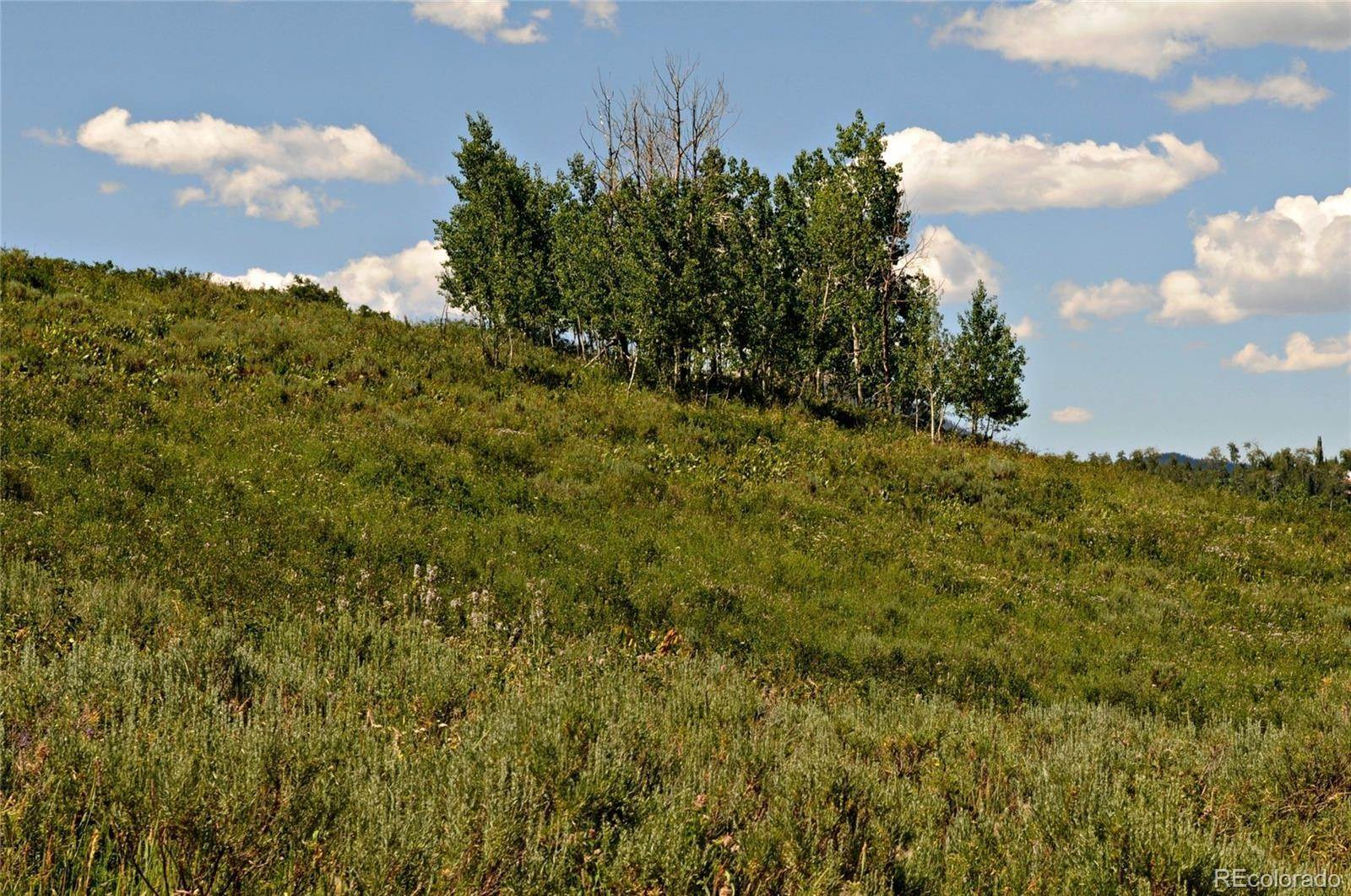 Land for Sale at 57175 Green Bird Place Clark, Colorado 80428 United States