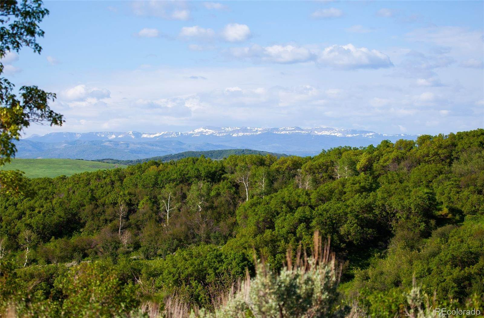 2. Land for Sale at 39125 Thompson Lane Steamboat Springs, Colorado 80487 United States