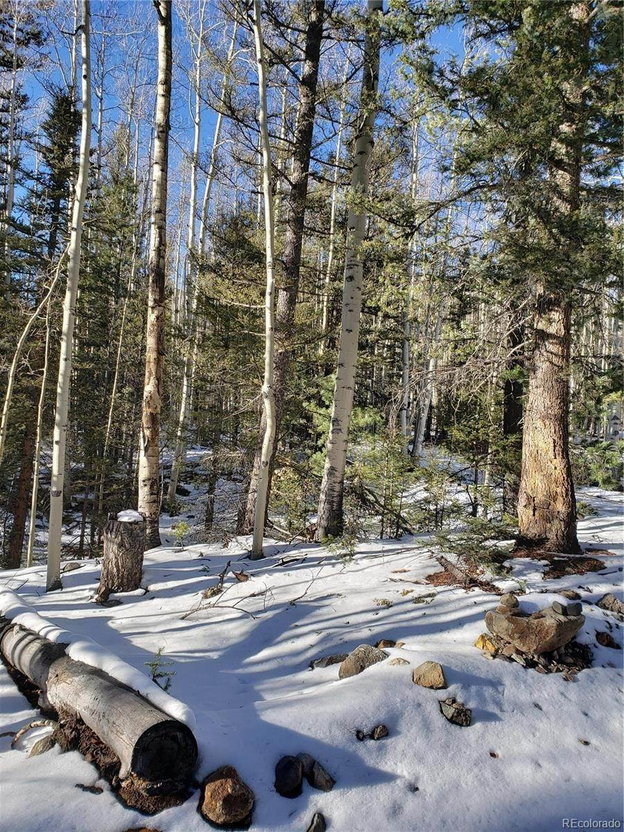 Land for Sale at 8th Street Jasper, Colorado 81144 United States