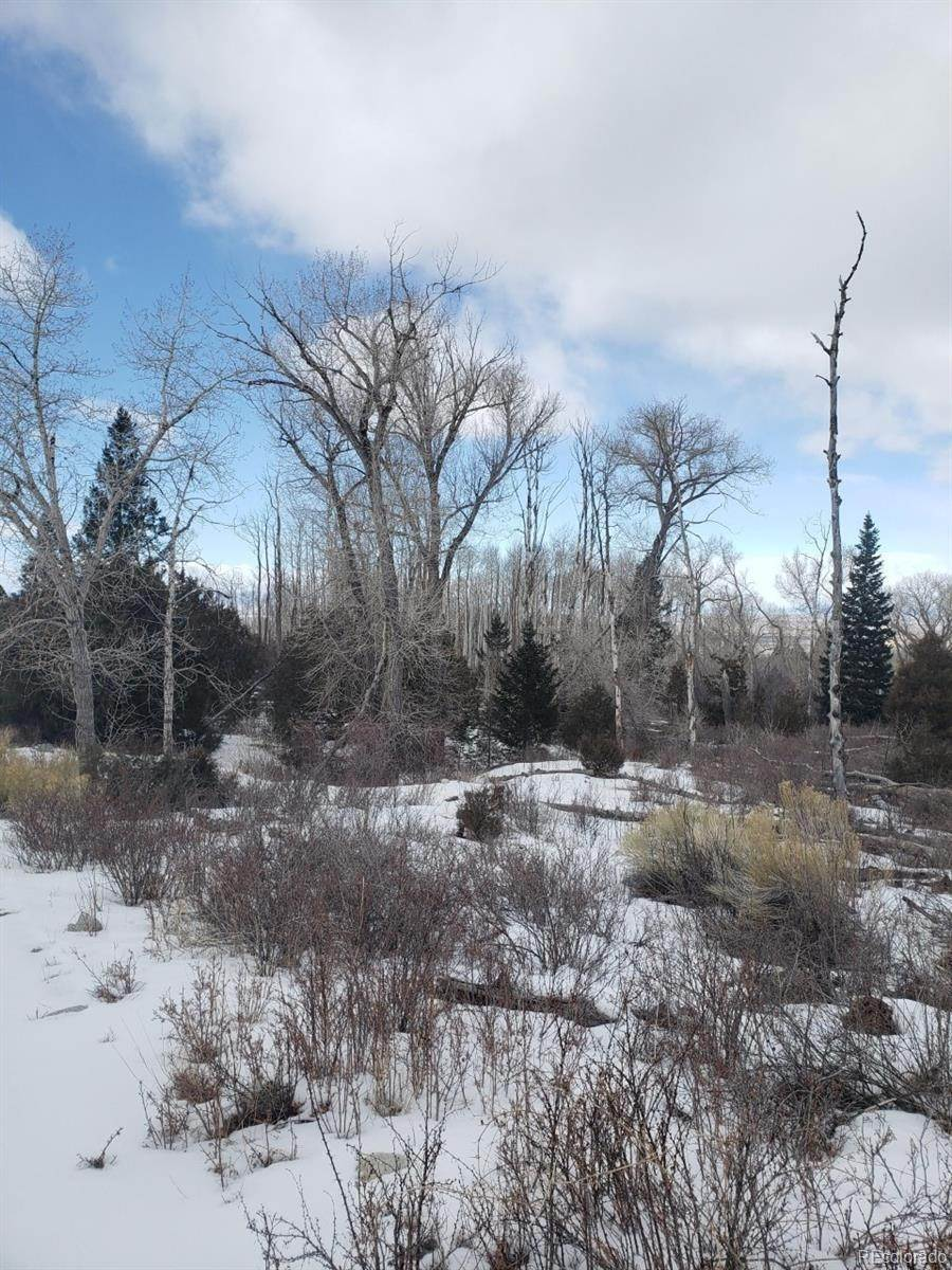 Terreno por un Venta en 239 Mill Run Hooper, Colorado 81136 Estados Unidos