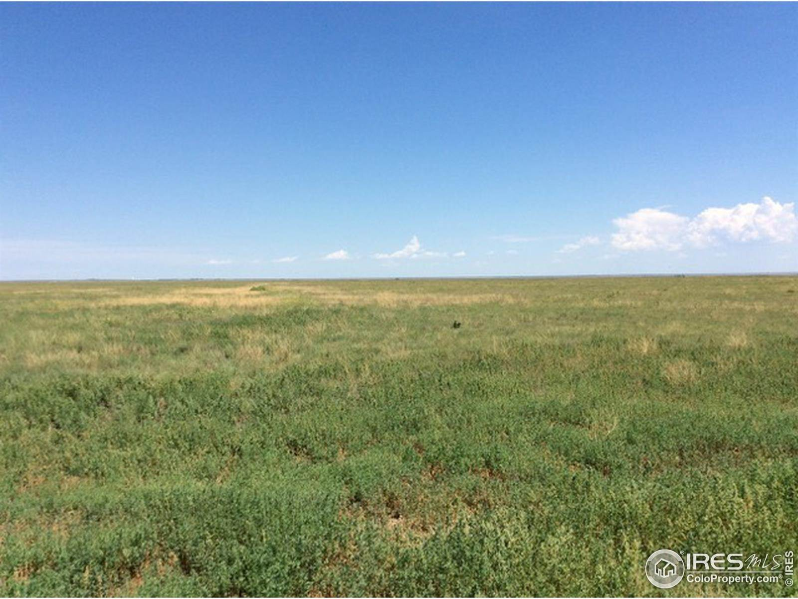 Farm for Sale at 321852 Haswell Haswell, Colorado 81045 United States