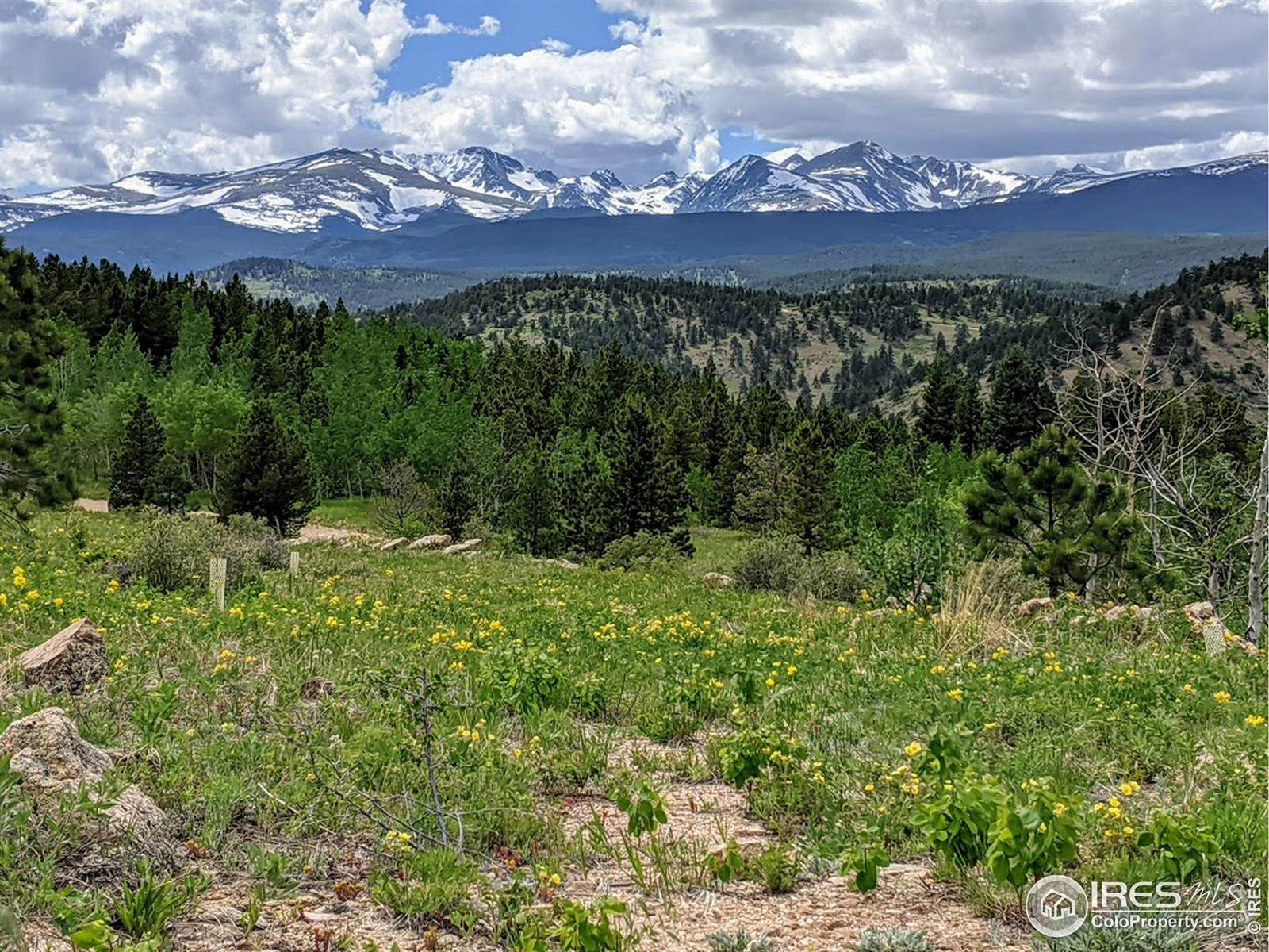 Land for Sale at 5000 Ridge Road Nederland, Colorado 80466 United States