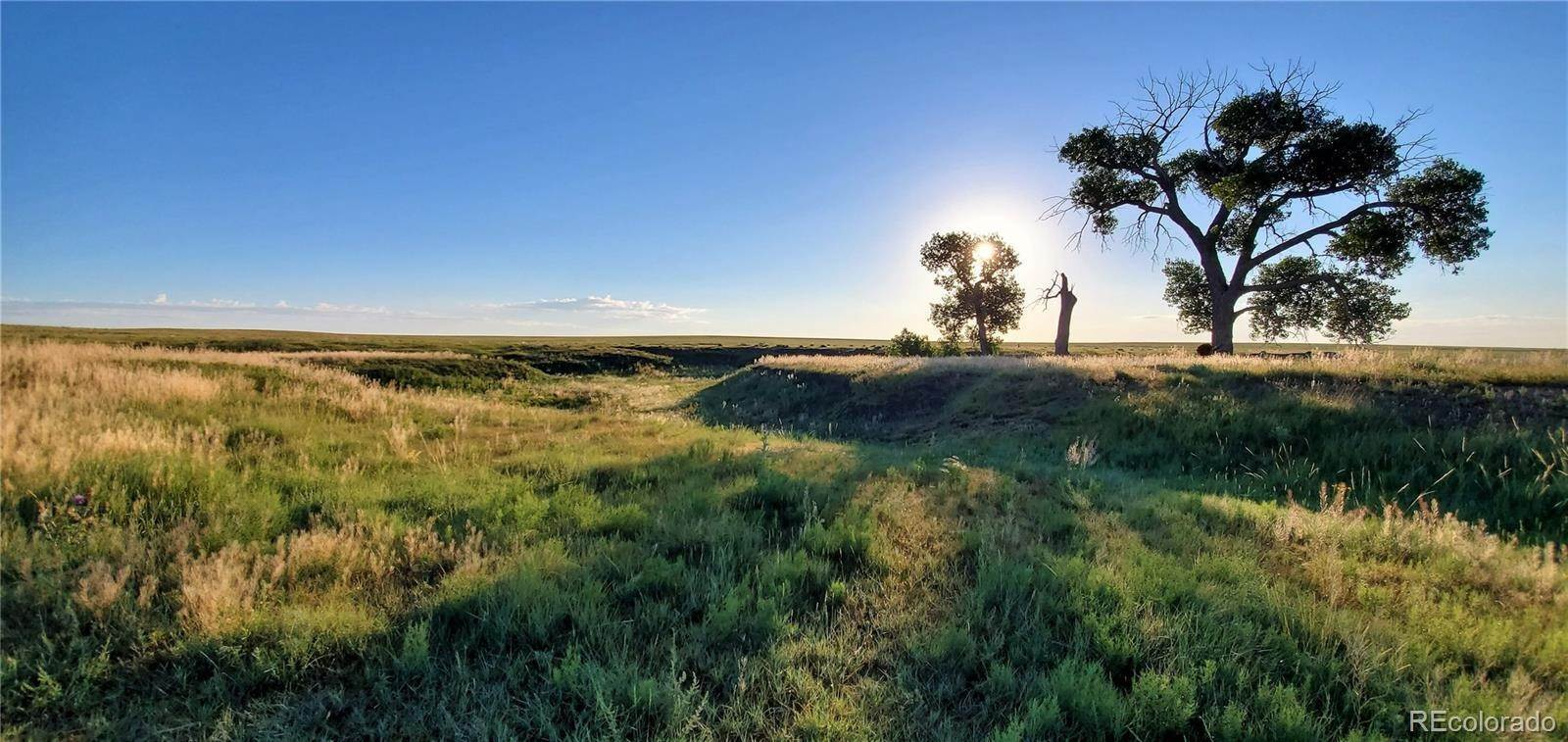 Land for Sale at TBD Hwy 287 TBD Hwy 287 Limon, Colorado 80828 United States