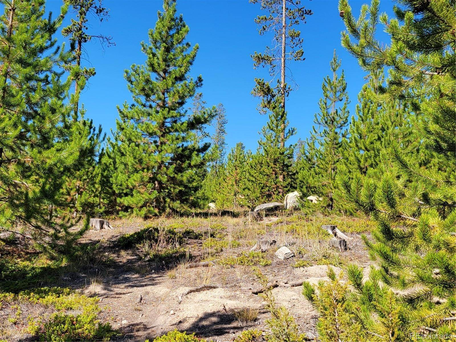 Land for Sale at 473 GCR 4571 Grand Lake, Colorado 80447 United States