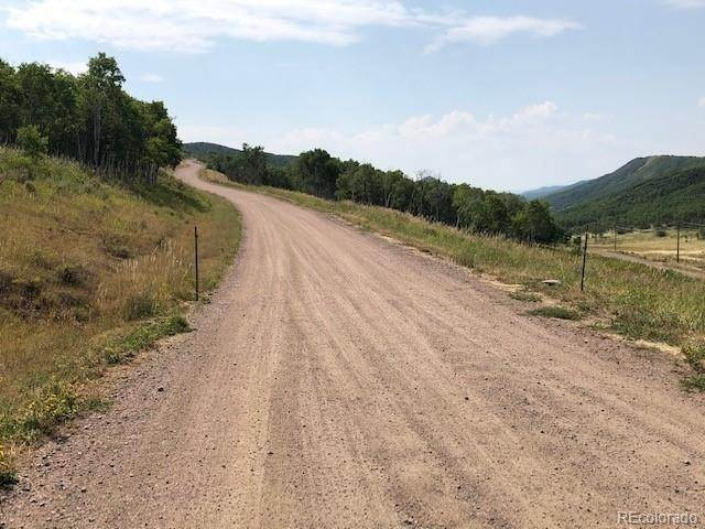 Land for Sale at 29000 County Road 179 Oak Creek, Colorado 80467 United States