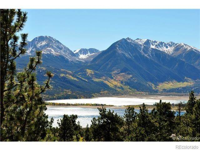 Land for Sale at 351 Parry Peak Drive Twin Lakes, Colorado 81251 United States