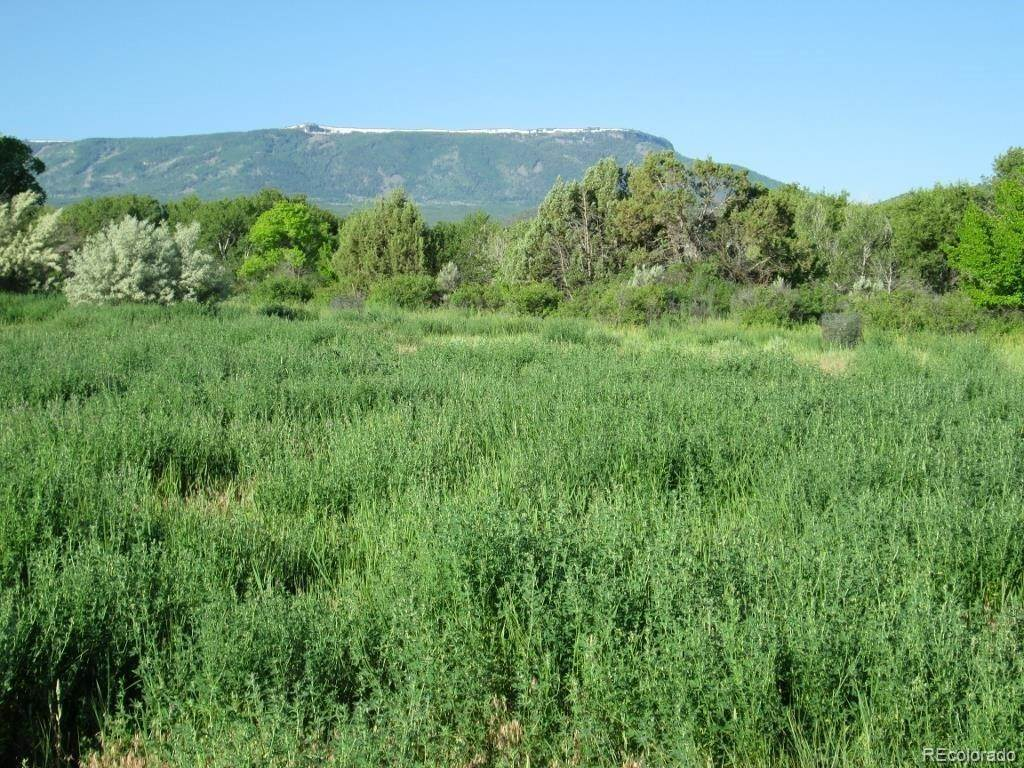 Land for Sale at 10600 Foxcross Lane Mesa, Colorado 81643 United States