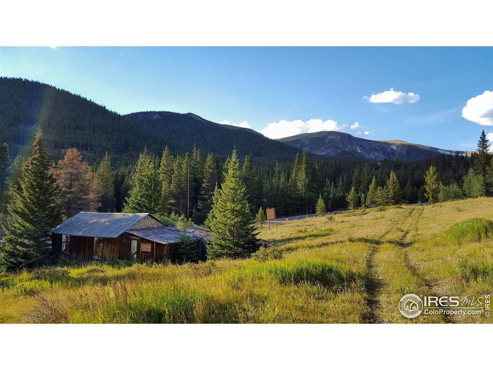 Land for Sale at Fall River Road Idaho Springs, Colorado 80452 United States