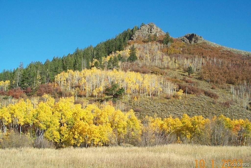 Land for Sale at 23605 Stagehorn Trail Oak Creek, Colorado 80467 United States