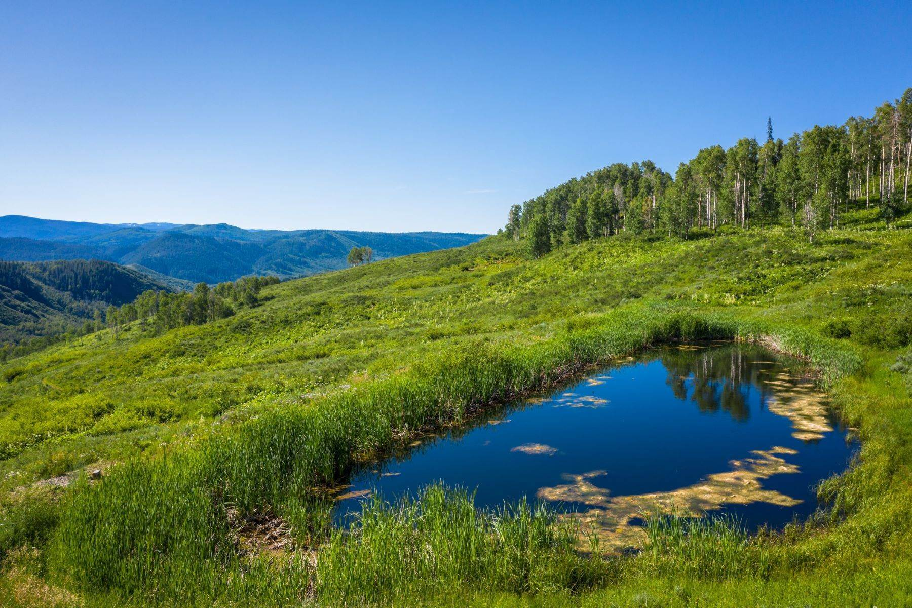 Land for Sale at Mountain Solitude with water and wildlife 57140 Green Bird Place Clark, Colorado 80428 United States