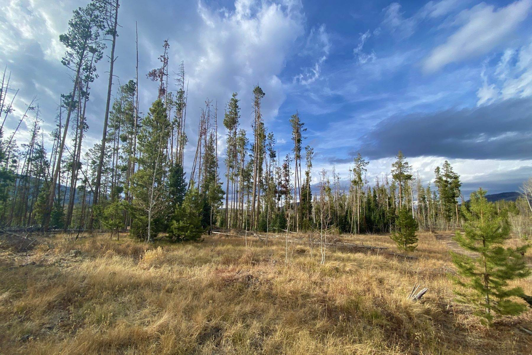 3. Land for Sale at Gorgeous Views With Mature Trees & Open Space TBD Halter Trail Oak Creek, Colorado 80467 United States