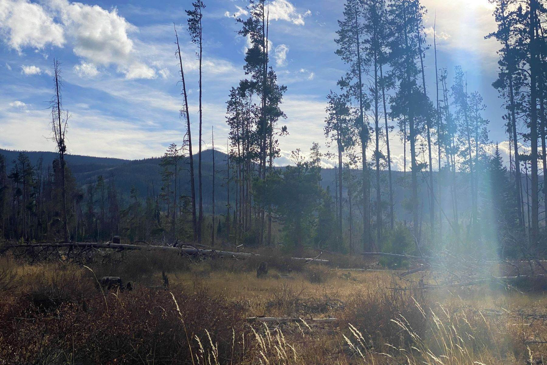 10. Land for Sale at Gorgeous Views With Mature Trees & Open Space TBD Halter Trail Oak Creek, Colorado 80467 United States