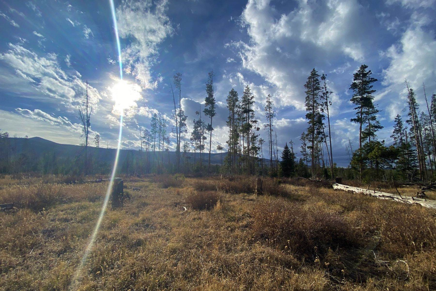 6. Land for Sale at Gorgeous Views With Mature Trees & Open Space TBD Halter Trail Oak Creek, Colorado 80467 United States