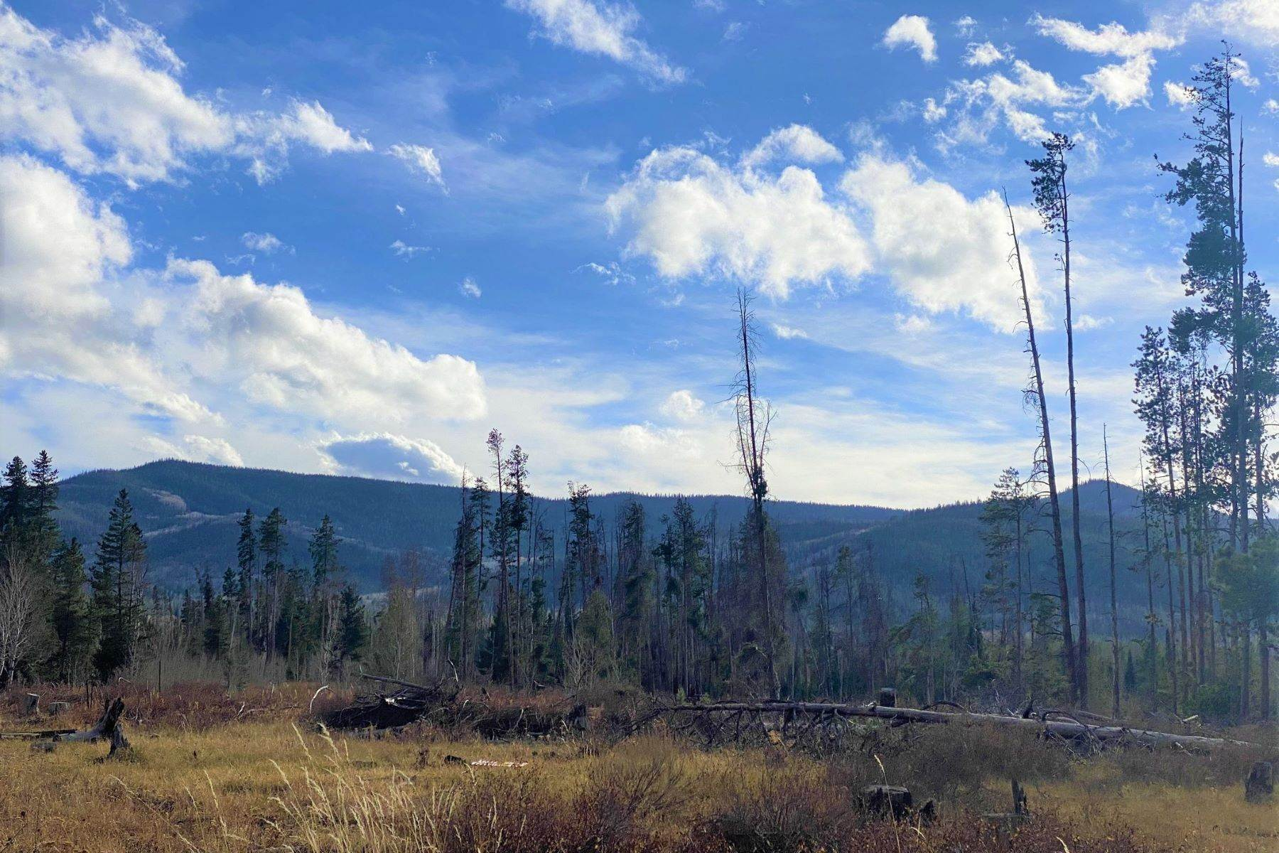 9. Land for Sale at Gorgeous Views With Mature Trees & Open Space TBD Halter Trail Oak Creek, Colorado 80467 United States