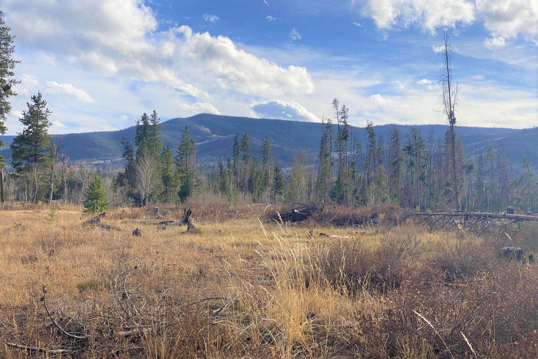 Land for Sale at Gorgeous Views With Mature Trees & Open Space TBD Halter Trail Oak Creek, Colorado 80467 United States