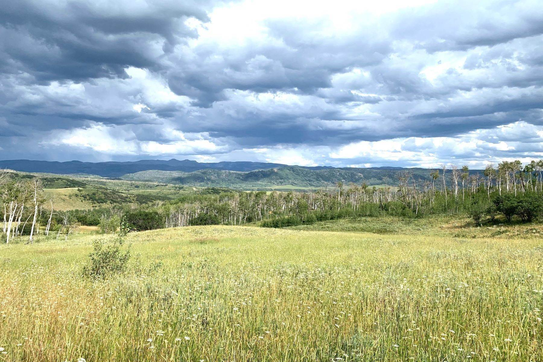 Property for Sale at Murphy-Larsen Ranch Lot #5 56020 Hannahs Way Clark, Colorado 80428 United States