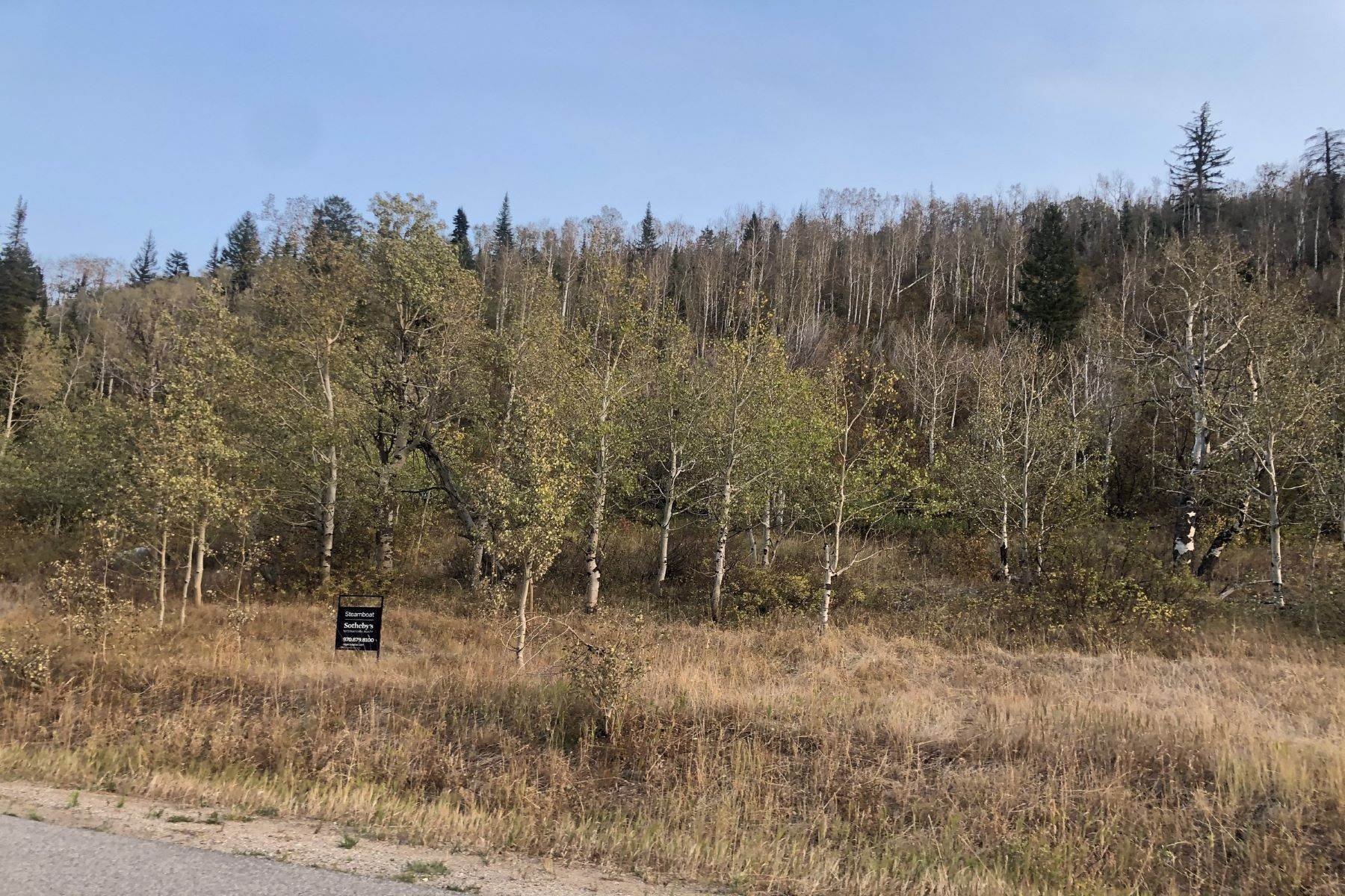 Land for Sale at Elkin's Meadow Lot 8 2985 Littlefish Trail Steamboat Springs, Colorado 80487 United States